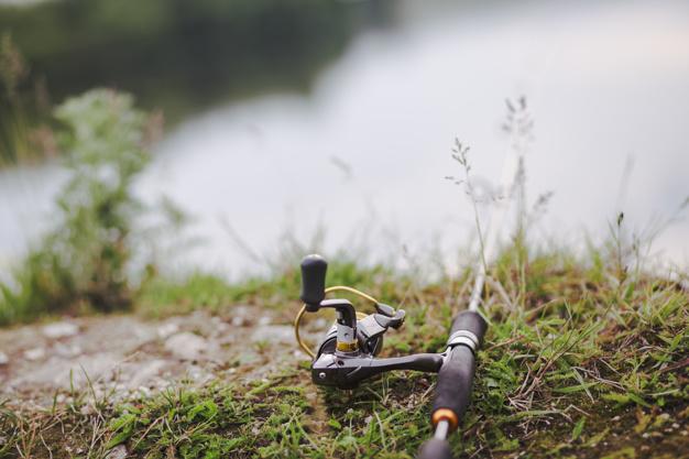 fiskegrej